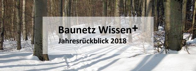 BAUNETZ WISSEN + Newsletter +++ plus +++ Jahresrückblick 2018