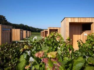 Zehn identische Häuser dienen den Besuchern als Übernachtungsmöglichkeit in den Weingärten