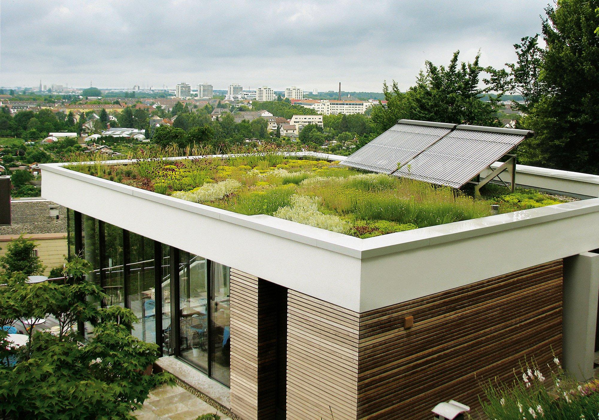 wandelemente aus massivholz nachhaltig bauen news produkte baunetz wissen. Black Bedroom Furniture Sets. Home Design Ideas