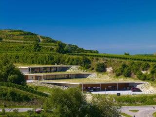 Ansicht Ost: Das Gebäudevolumen verteilt sich auf drei zueinander versetzten Ebenen, die mit den Weinbergterrassen verzahnt sind