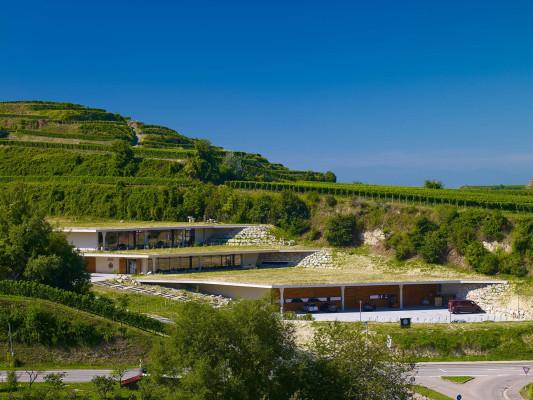 Weingut Franz Keller in Oberbergen