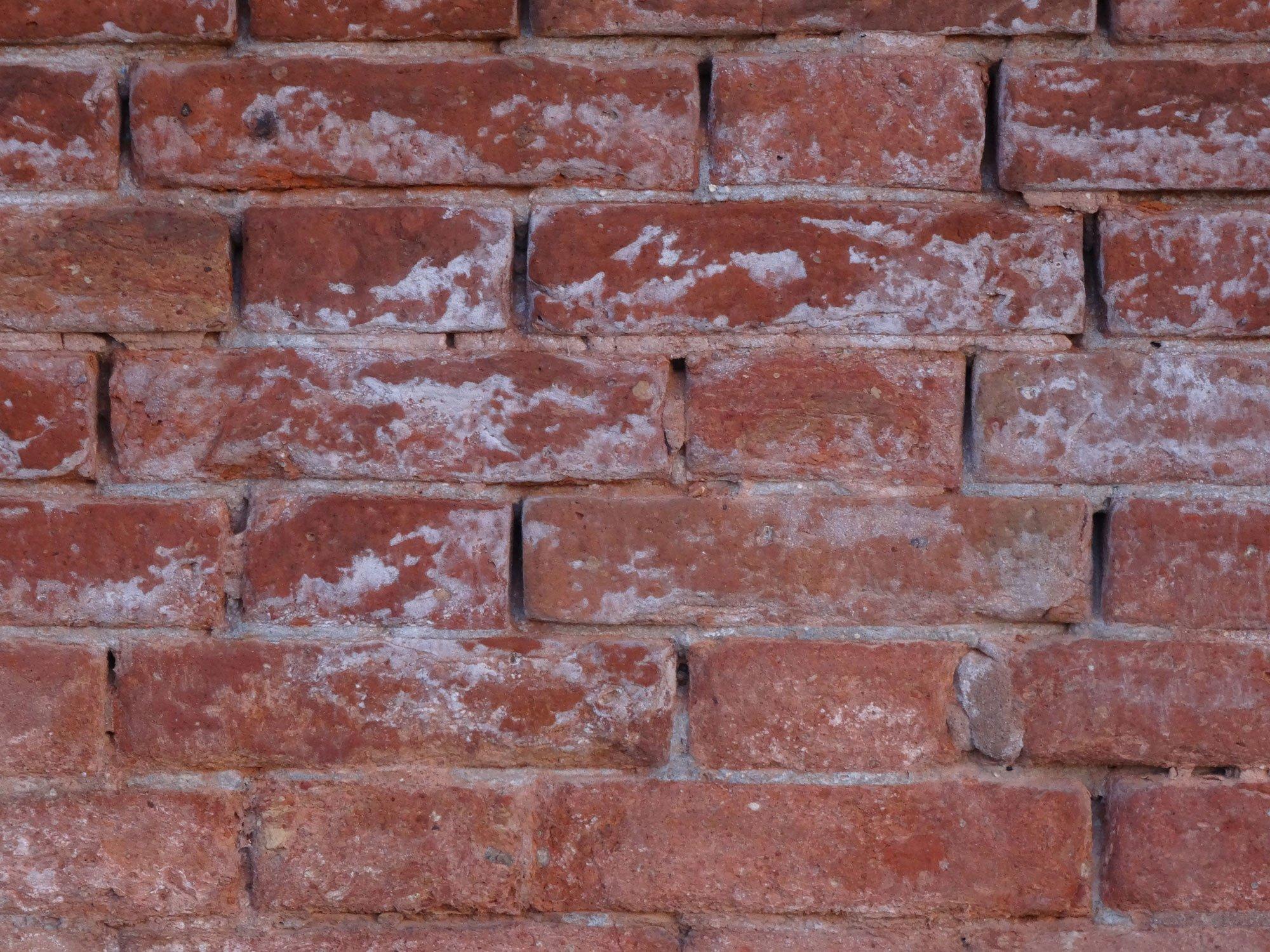Gut bekannt Ausblühungen | Mauerwerk | Glossar | Baunetz_Wissen PX81