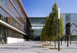 Riegel, Foyer und Zentralgebäude