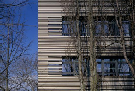 sanierung der bernhard rose schule und blumen grundschule in berlin fassade kultur bildung. Black Bedroom Furniture Sets. Home Design Ideas