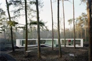 Die Villa liegt inmitten eines Douglasienwaldes