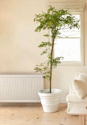 warmwasserspeicher bedarfsgerecht dimensionieren heizung. Black Bedroom Furniture Sets. Home Design Ideas